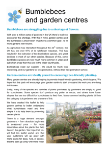 Bumblebees and garden centres - Bumblebee Conservation Trust