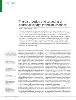 The distribution and targeting of neuronal voltage