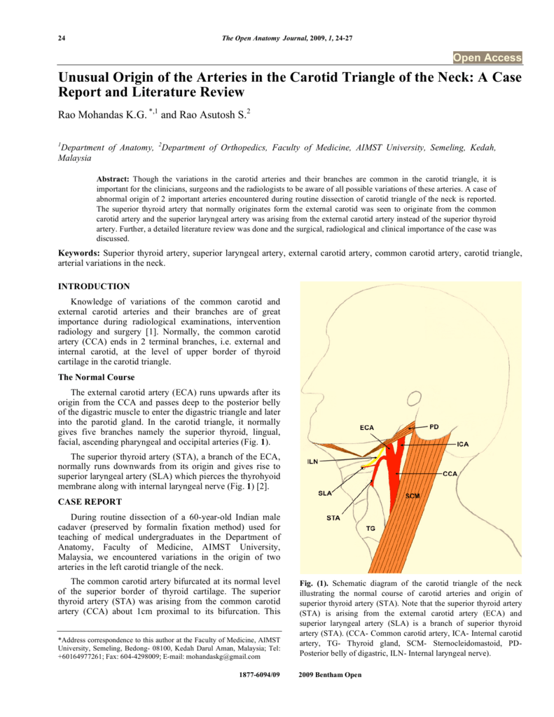 Unusual Origin of the Arteries in the Carotid Triangle of the Neck: A