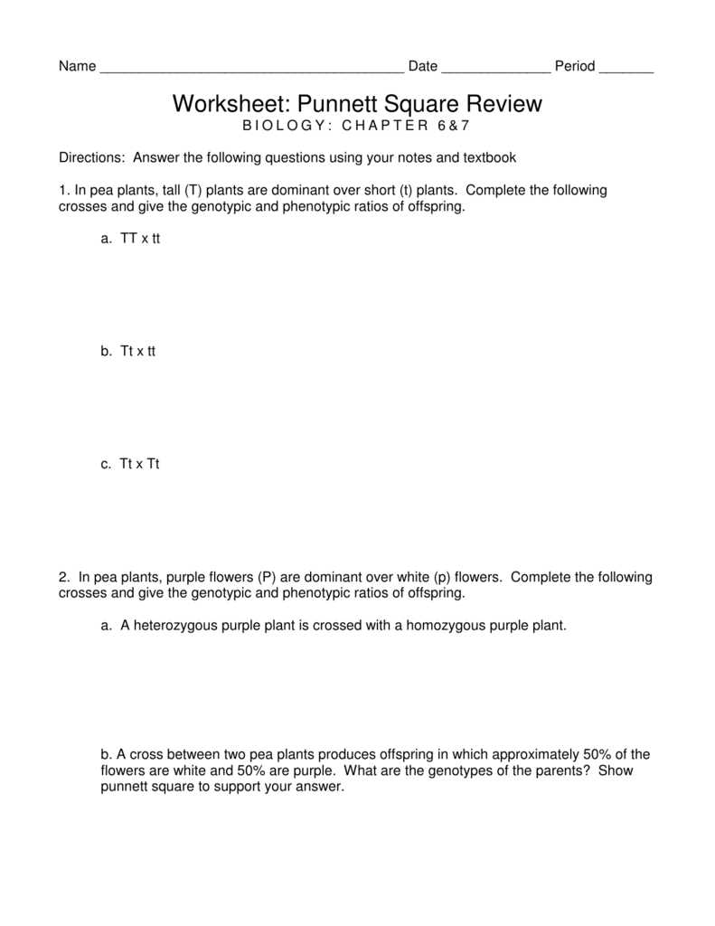 Worksheets Punnett Square Worksheet 1 Answer Key worksheet punnett square review