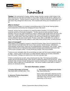 Tinnitus Information Sheet