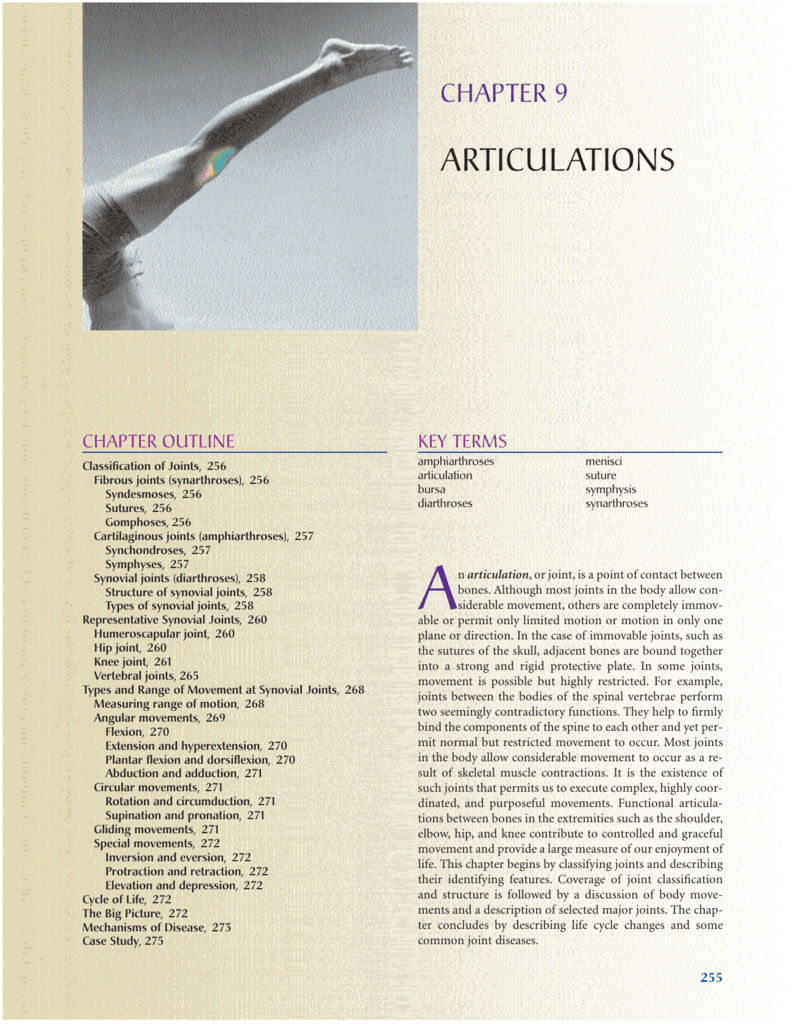 Ch 10 Articulations Textbook Compare the structures of a synchondrosis and a symphysis. studylib