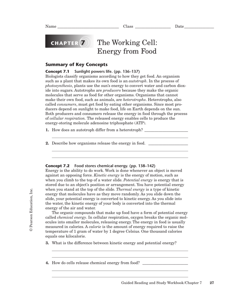the working cell energy from food rh studylib net energy and matter guided reading and study energy resources guided reading and study answers