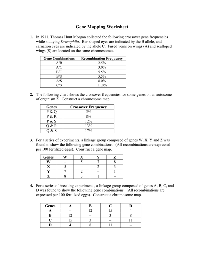 worksheet Gene Mapping Worksheet 008442497 1 08d2fbc58bb148c098cce539ed797815 png