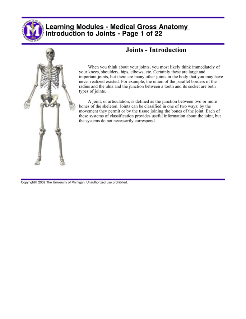 Introduction To Joints Page 1 Of 22 Learning Modules The carpometacarpal joints in the thumb are examples of saddle joints. introduction to joints page 1 of 22