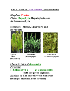 Unit 4 – Notes #2 – Non-Vascular Plants