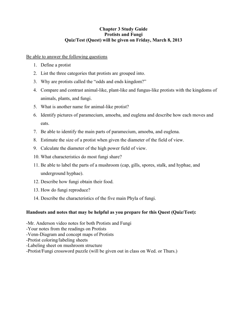 Chapter 3 Study Guide – Protists Worksheet