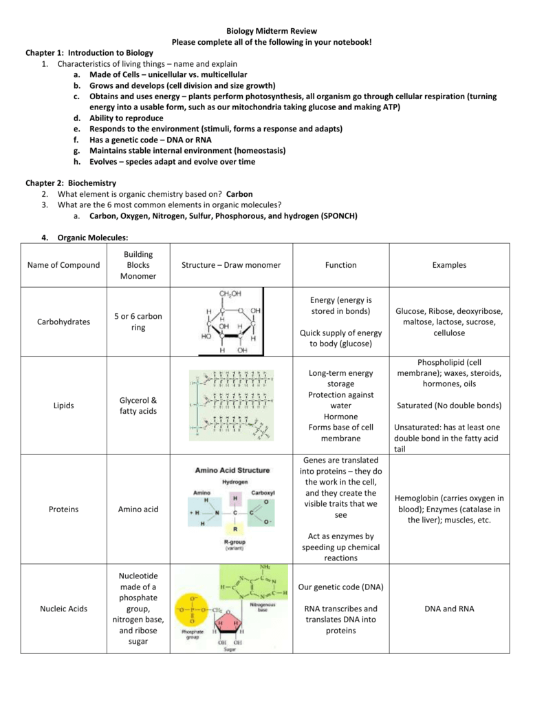 Biology Midterm Review - Answer Key