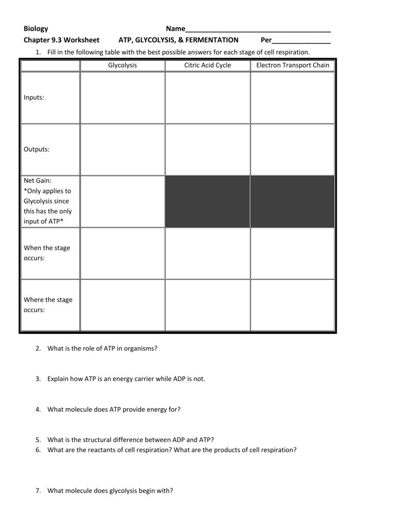 9 3 Worksheet Atp Glycolysis Fermentation