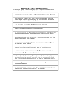 Student Sheet: EVALUATE: Tracing Matter And Energy