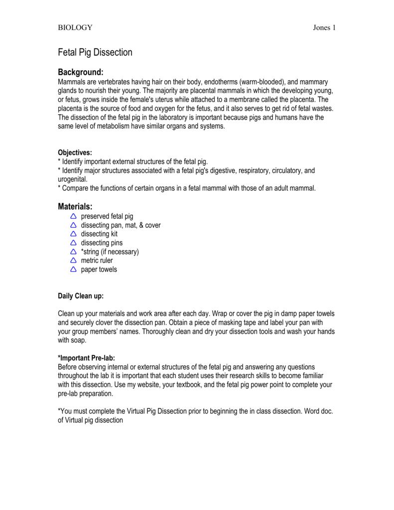 Virtual Pig Dissection Worksheet