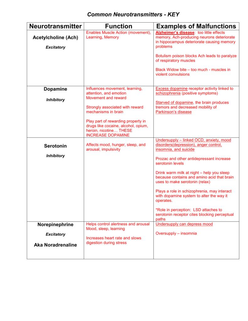 worksheet Neurotransmitters Worksheet common neurotransmitters