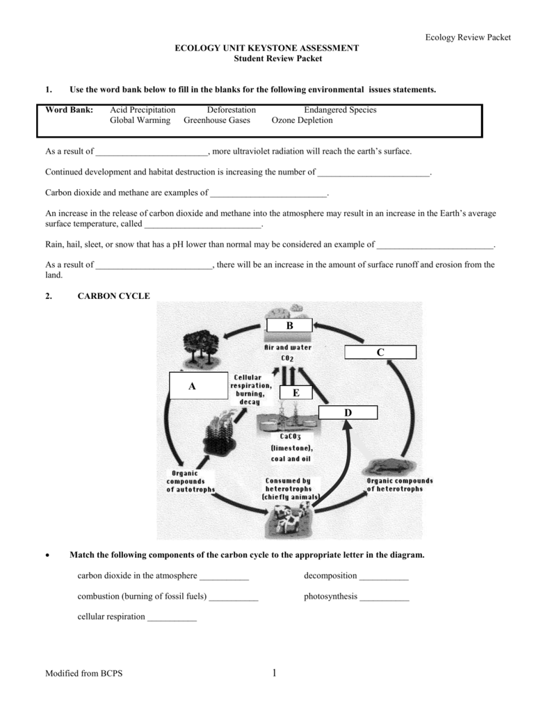 Ecology Unit Review Worksheet - Nidecmege