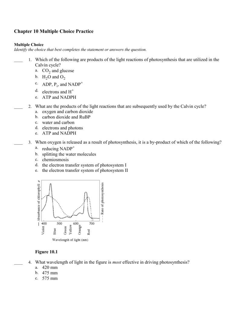 Chapter 10 Multiple Choice Practice