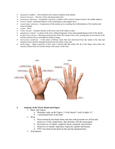 Hand,wrist,_and_elbow_notes