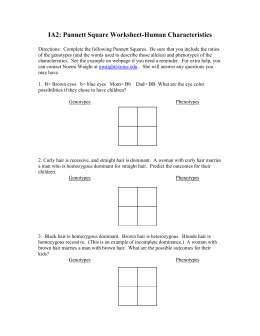 punnett square worksheet 1. Black Bedroom Furniture Sets. Home Design Ideas