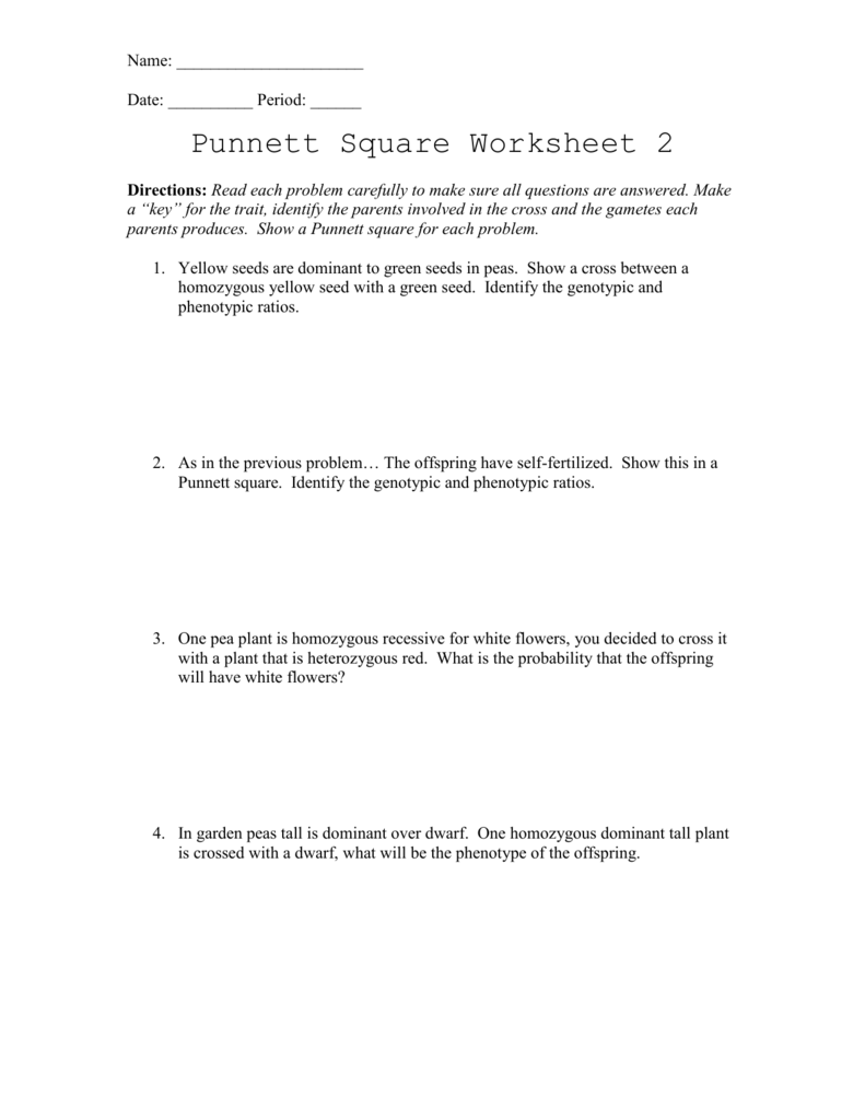 punnett square worksheet with answers Termolak – Punnet Square Worksheet