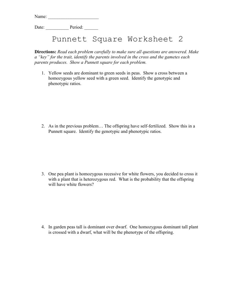 Punnett Square Worksheet 2