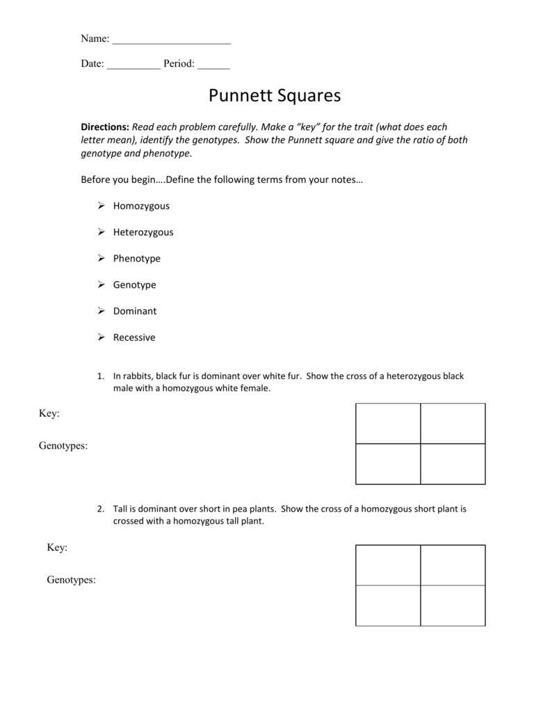 Punnett Square Worksheet 1