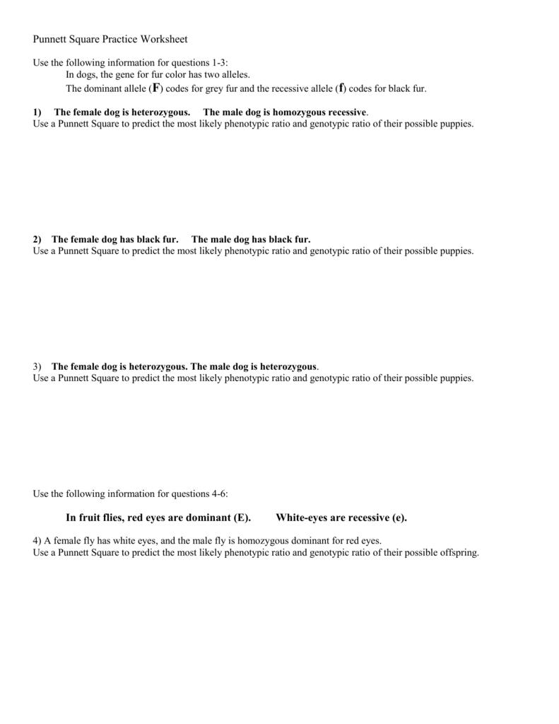 worksheet Punnett Square Practice Worksheet Answers 008475056 1 c66328b9226db4e4d96ed68ff139ec1f png