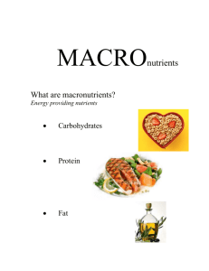 MACROnutrients - Seward Wellness