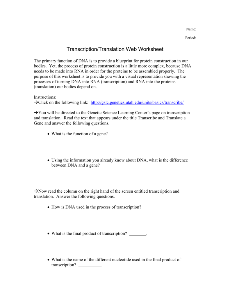 Translation webquest – Transcription and Translation Worksheet Answers