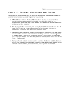 Name: Chapter 12: Estuaries: Where Rivers Meet the Sea Answer