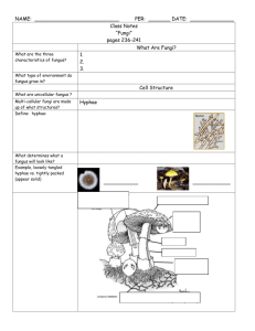 Fungi Notes - Conackamack Middle School