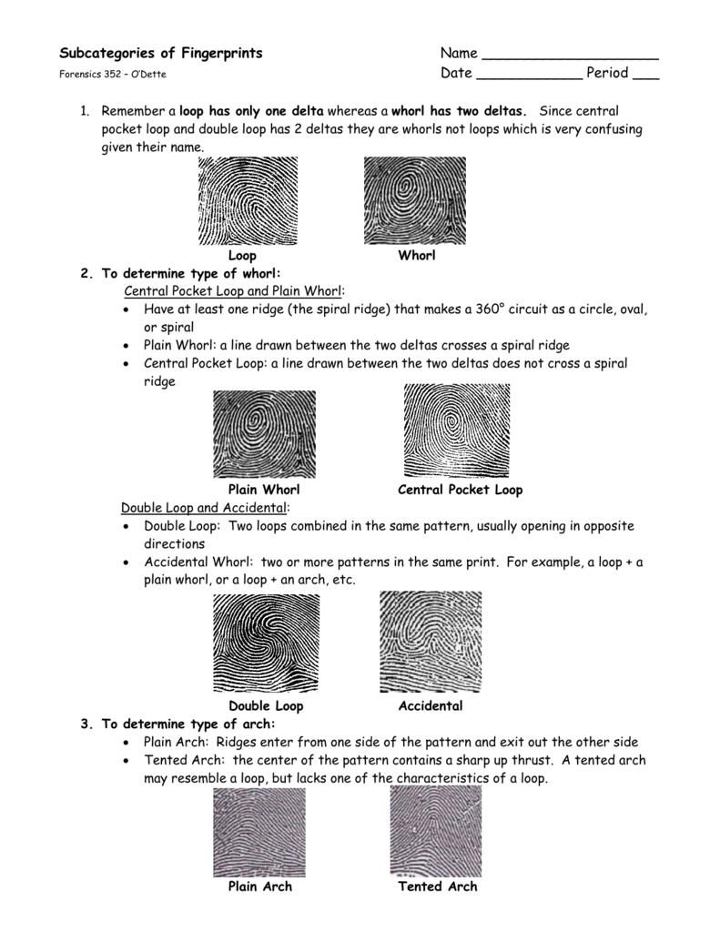 sc 1 st  studylib.net & Subcategories of Fingerprints Packet