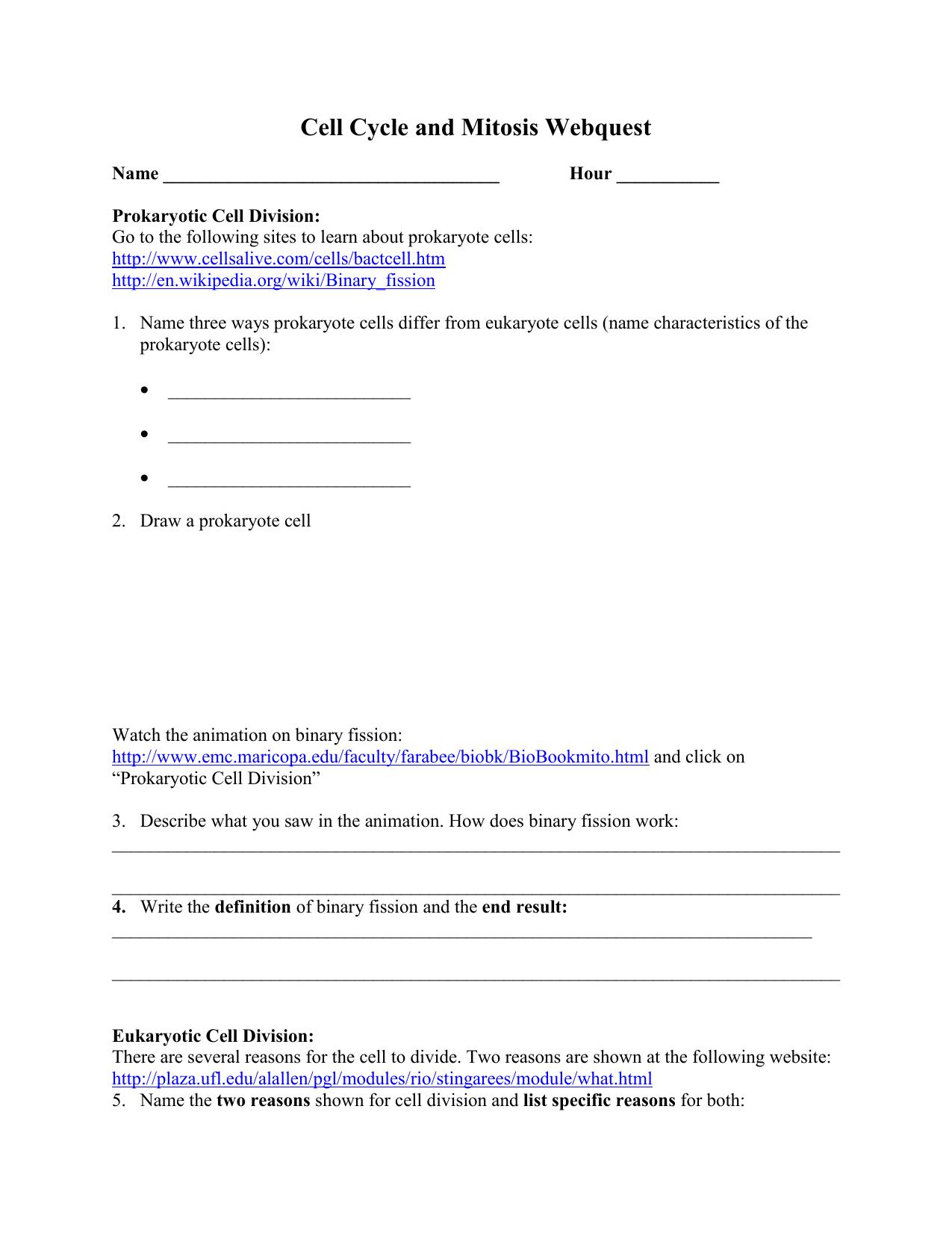 worksheet Binary Fission Worksheet 008509875 1 ae17390ab8cf809f2e18a0bf18464d68 png