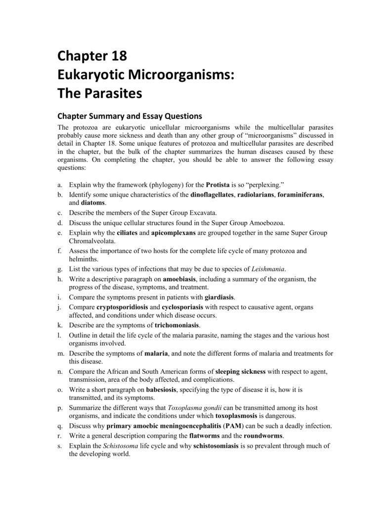 chapter eukaryotic microorganisms