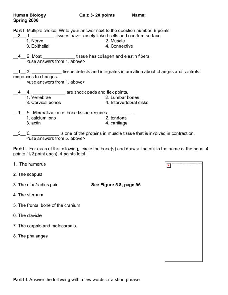 Human Biology Quiz 3- 20 points Name: Spring 2006 Part I