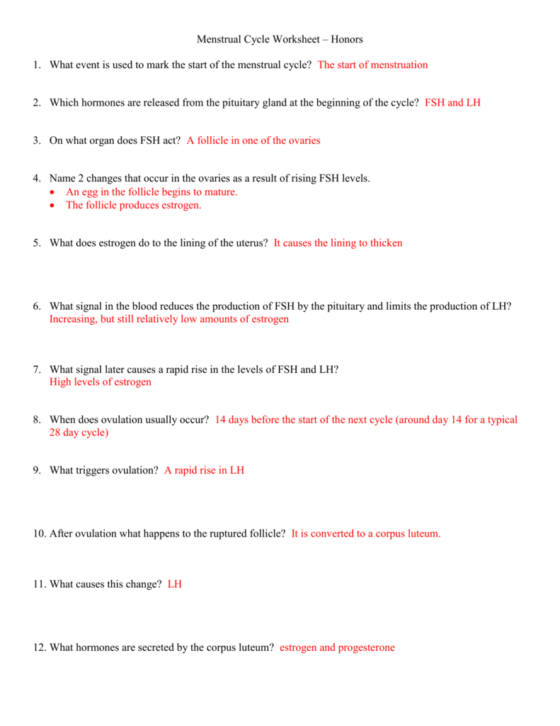 Menstrual cycle worksheet ibookread Read Online