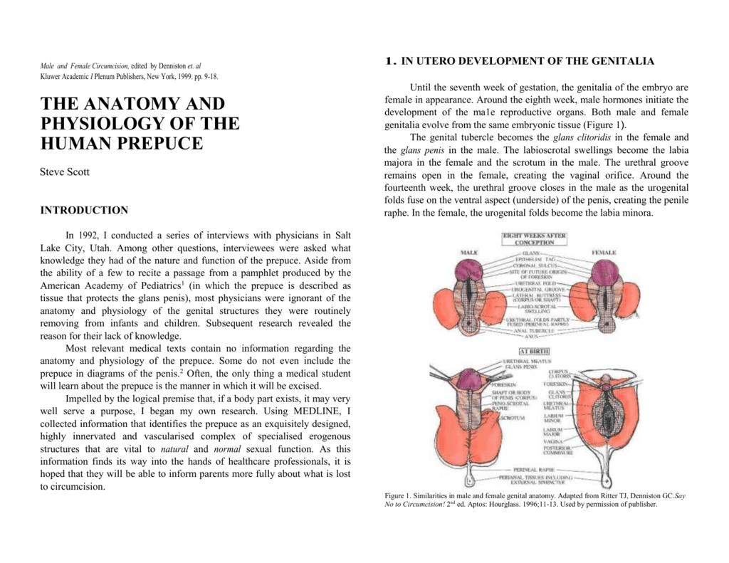 Anatomy_and_Physiolo..