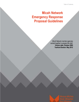 Micah Network Emergency Response Proposal Guidelines