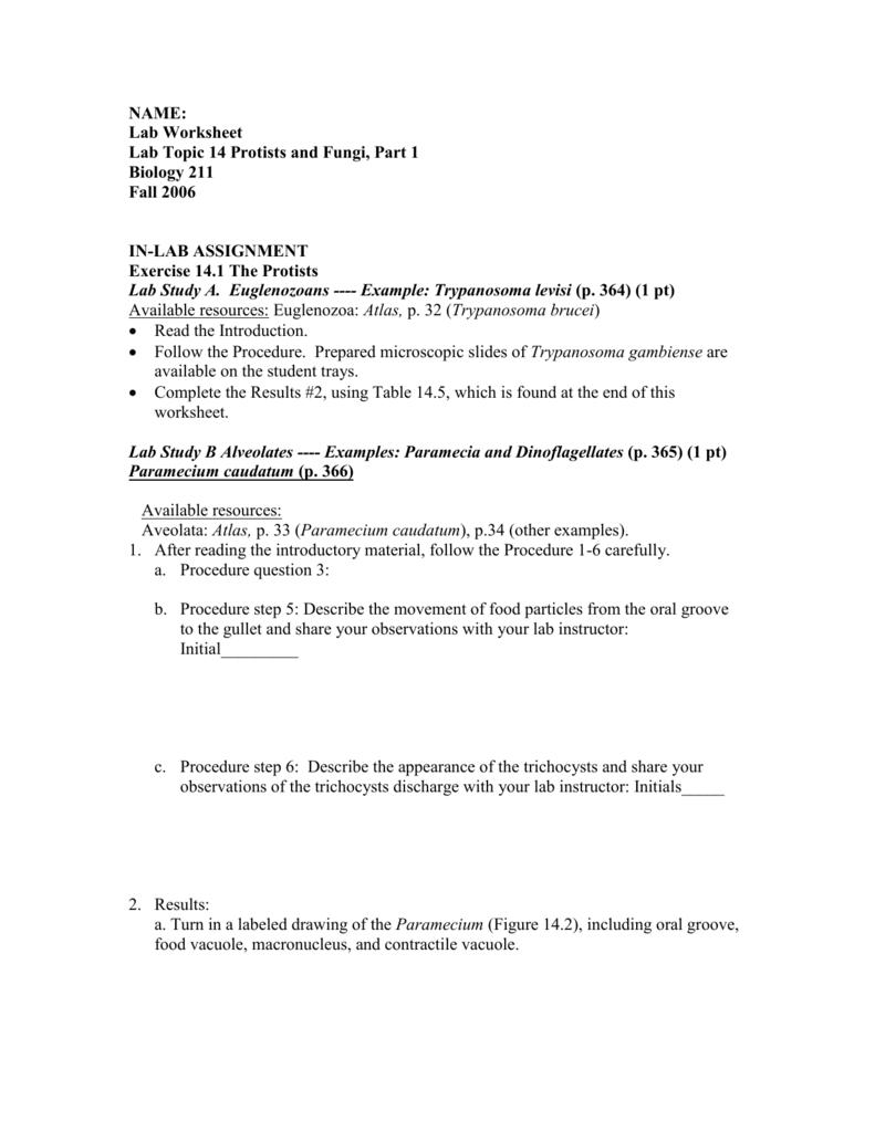 Worksheets Protists Worksheet protists