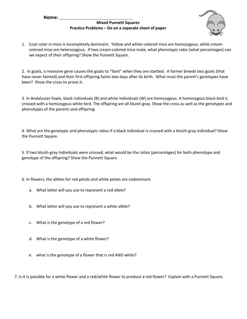 Mixed Punnett Square Practice Worksheet relangga – Punnett Square Practice Worksheet