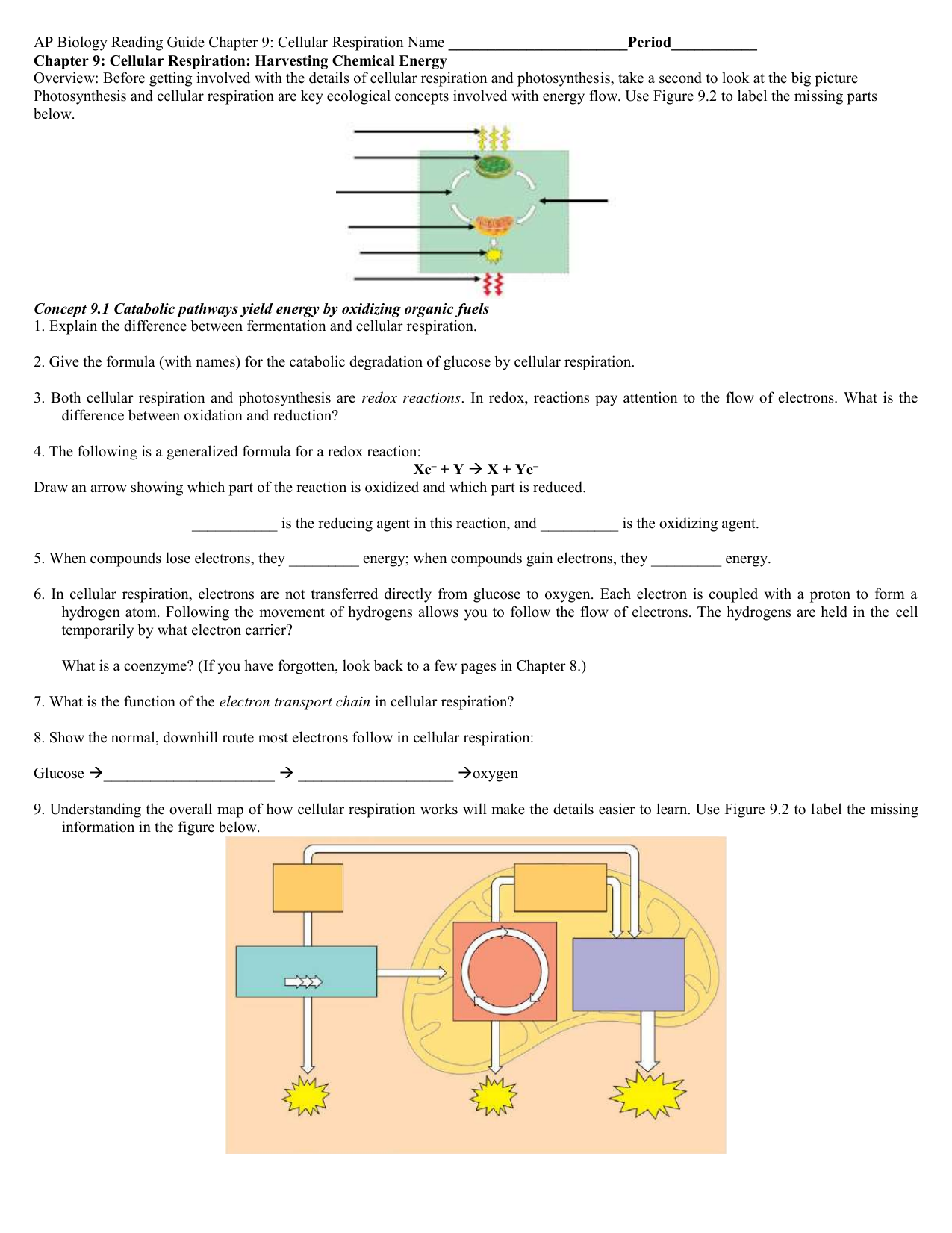 Reading guide ccuart Images