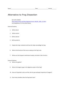 Alternate to Frog Dissection Number 2