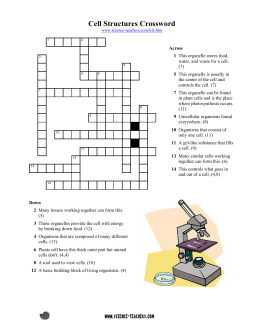 crossword activity can be used to review basic plant and animal cell