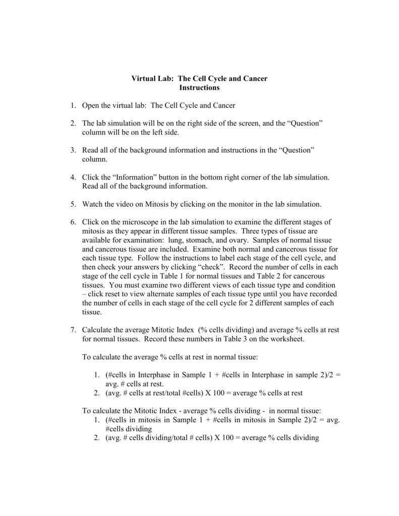 Virtual Lab The Cell Cycle and Cancer – Cell Cycle and Mitosis Worksheet