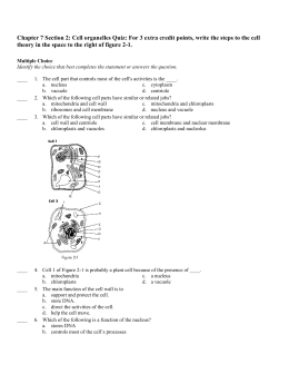 Chapter 7 Section 2: Cell organelles Quiz