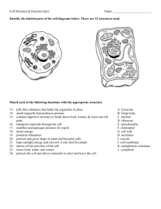Cell Structure & Function Quiz