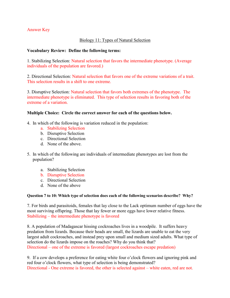 Mechanisms of Evolution Worksheet