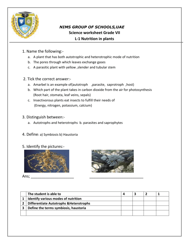 worksheet Autotrophs Vs Heterotrophs Worksheet nims group of schoolsuae science worksheet grade vii l