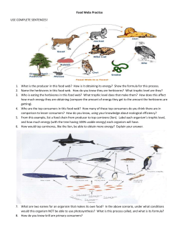 Food Webs Practice USE COMPLETE SENTENCES! What is the
