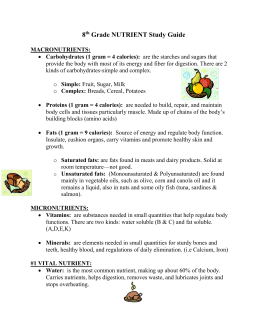 8th Grade NUTRIENT Study Guide