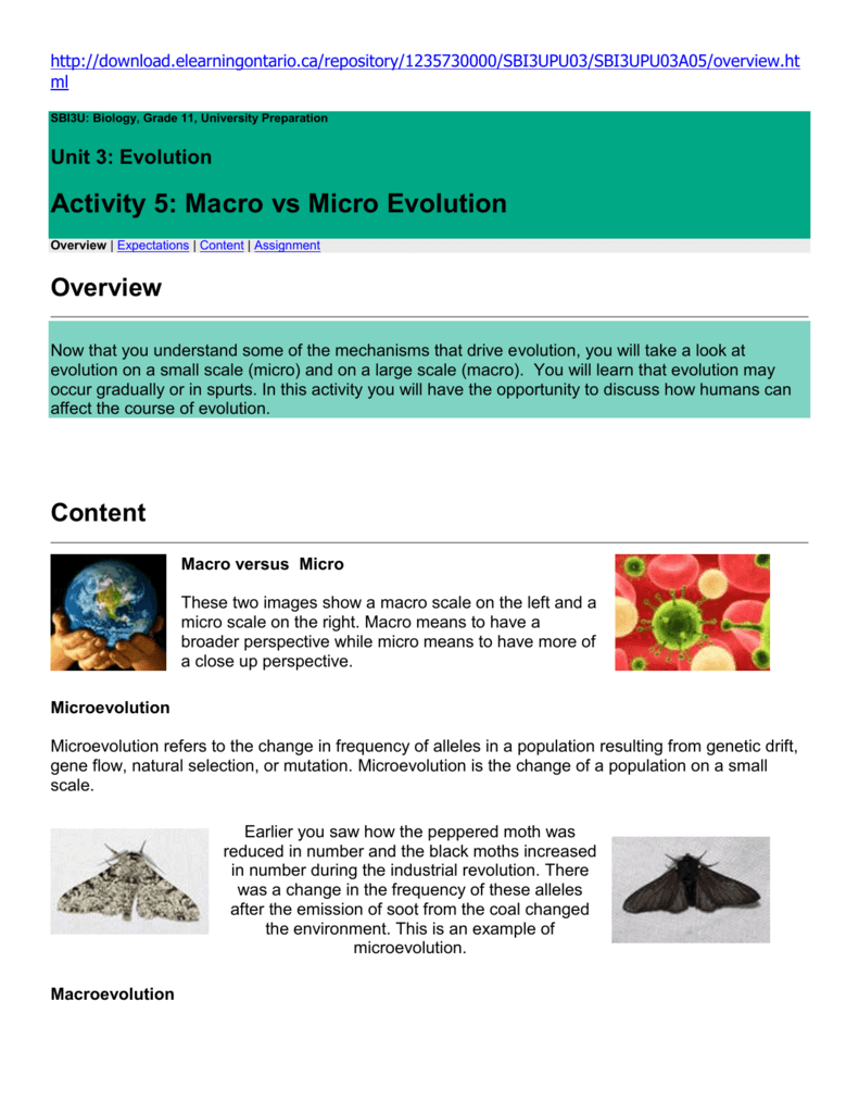 Activity 5: Macro vs Micro Evolution