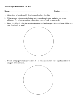 Microscope Worksheet – Cork
