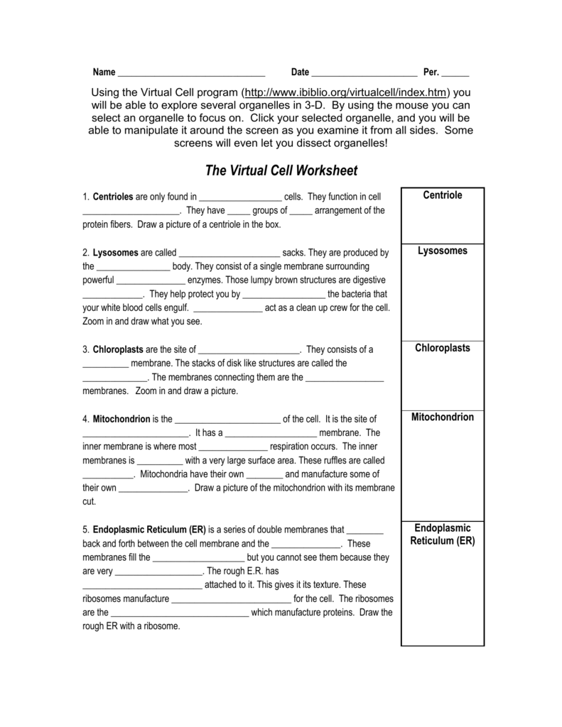 Worksheets Virtual Cell Worksheet name homeworknow com